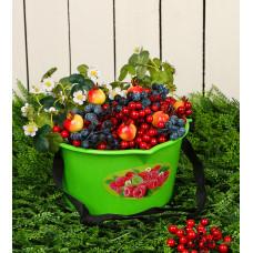 Ёмкость для сбора ягод, 3 л, с рисунком