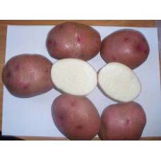 Картофель Любава. Сетка 2 кг
