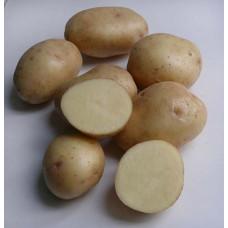 Картофель Невский. Сетка 2 кг