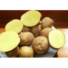 Картофель Винета. Сетка 2 кг